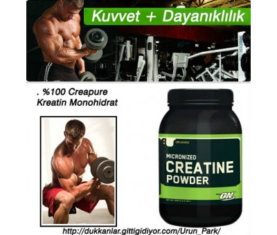 Optimum Nutrition Creatine Powder Kreatin 300 gr